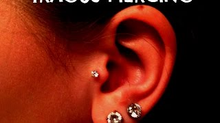 TRAGUS PIERCING EXPERIENCE- Cleaning, Jewelry type, etc.