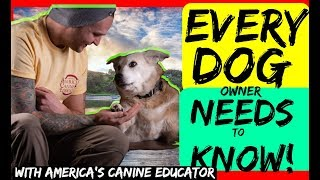 Dog Training Advice every Dog Owner should hear  The truth about training tools like a prong collar