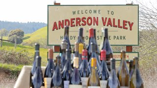 Taste of Adventure - A Message From Anderson Valley (a Social Media Ad Project)