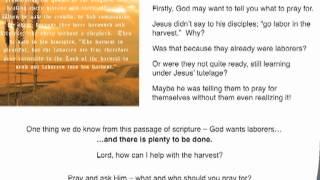 Matthew 9: 35-38