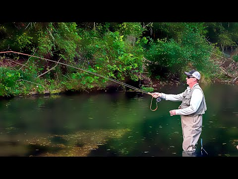 Fly-fishing The Ozarks