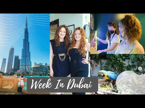 Week In My Life   Dubai Holiday   Wild Wadi Waterpark   Green Planet Dubai   LSB Brunch   Cabin Crew