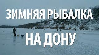 Лесохот - портал охотников, рыбаков, туристов - создан при ...