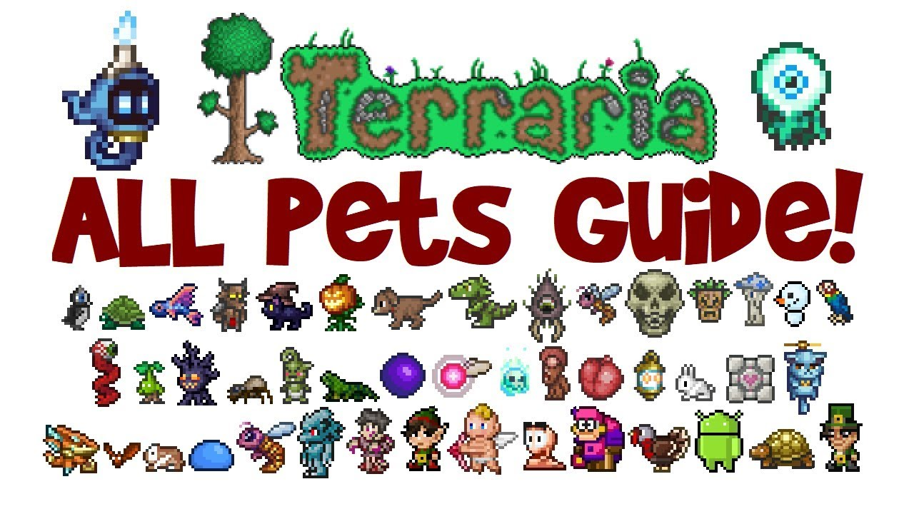 Terraria All Pets Light Pets Guide All Platforms 1 2 4 And 1 3 Pc Console Mobile Youtube