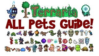 Terraria ALL Pets & Light Pets Guide! All platforms! (1.2.4 AND 1.3+, PC/console/mobile)