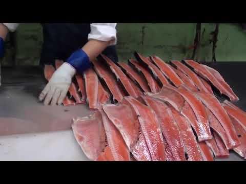 вот как выглядит работа в Норвегии на рыбе
