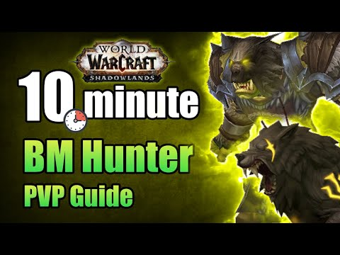 Shadowlands 9.0.2 Beast Mastery Hunter PVP Guide in under 10 minutes   WoW