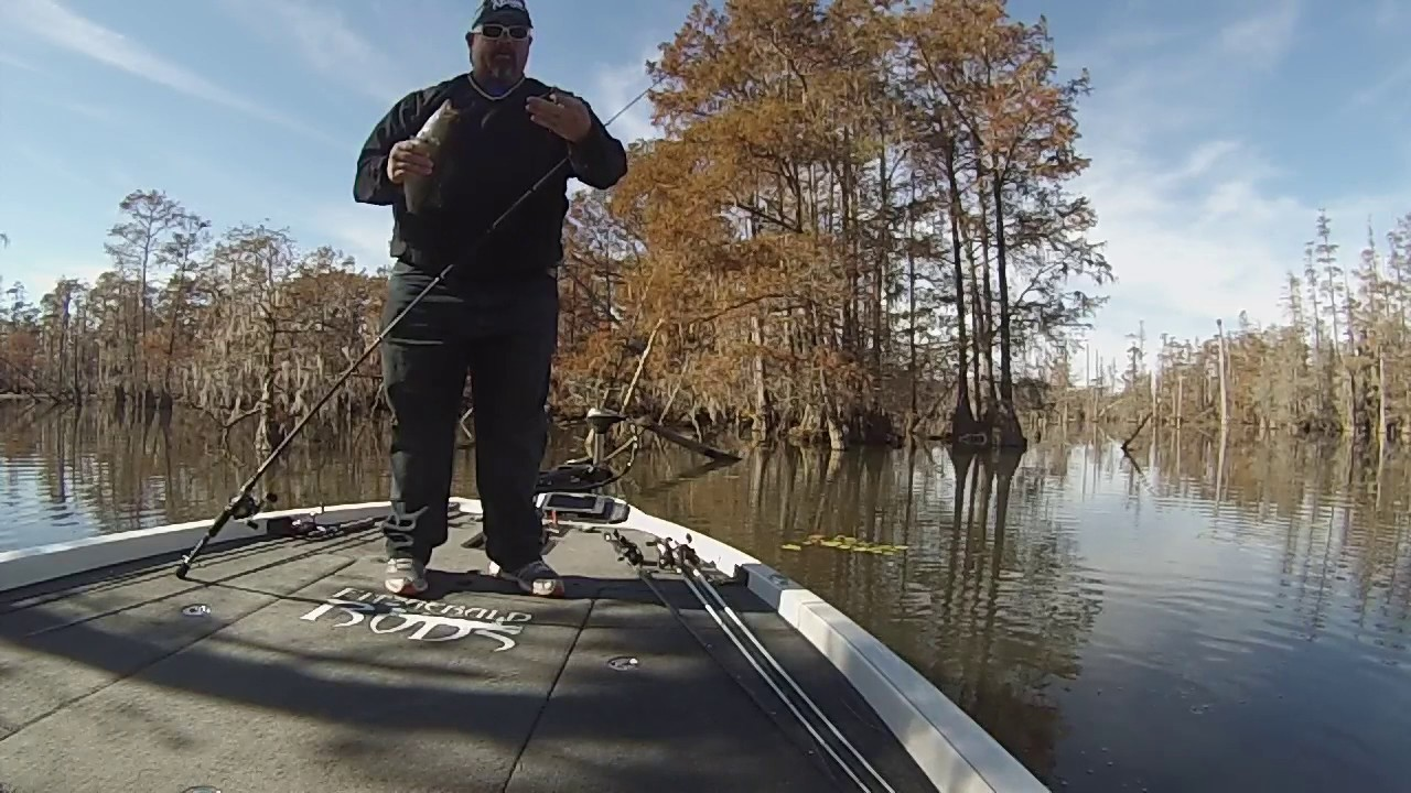 Santee cooper bass fishing 11 22 16 youtube for Santee cooper fishing report