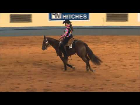 2014 AQHA Youth Yearling Geldings from YouTube · Duration:  2 minutes 6 seconds  · 901 views · uploaded on 03.08.2014 · uploaded by AQHA Video