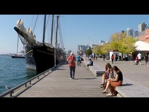 TORONTO Waterfront Harbour Walking - MYHA Adventures