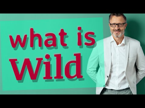 wild-|-meaning-of-wild