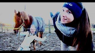 Equestrian ON/OFF | КОННЫЙ ВКЛ/ВЫКЛ  [Перезалив]