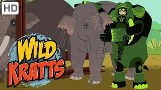 Wild Kratts 🐘 Elephant Creature Powers! | Kids Videos