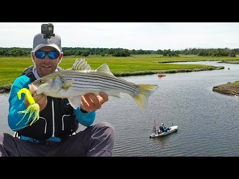 Fishing For Striper & Flounder In Backwater Creeks | Field Trips Delaware
