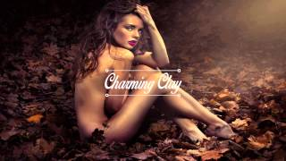Boss Axis - Challenger (Alle Farben Remix) | Charming Clay