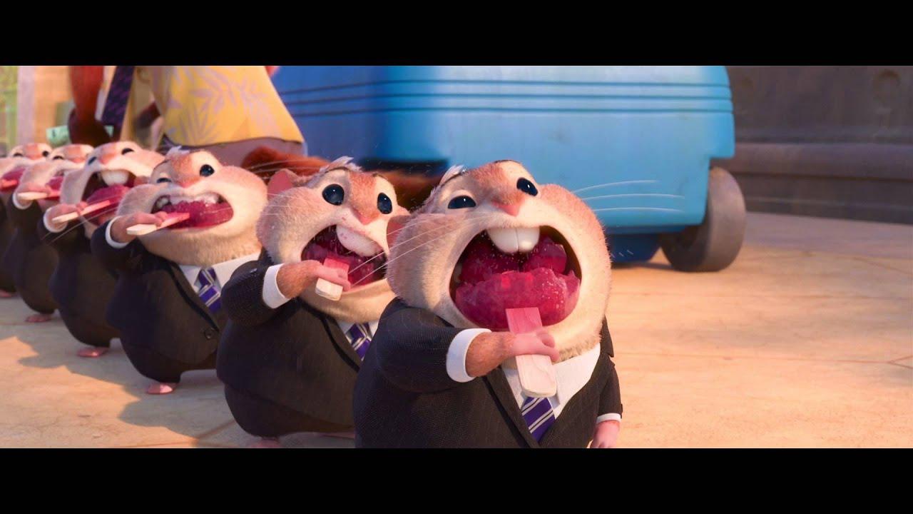 hamster porb