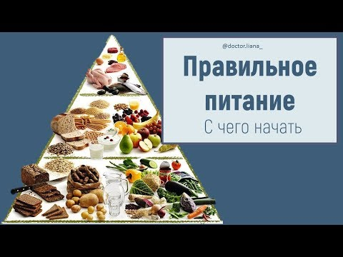 Правильное питание. ЧТО и СКОЛЬКО нужно есть при правильном питании