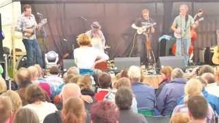 Dent Music Festival 2013, King Courgette.  HD video.