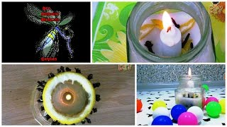 DIY Mosquito Repellent Candles - How To Get Rid Of Mosquitoes In Friendly Way