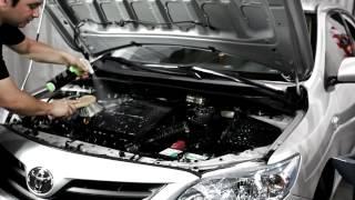 Limpieza de motor -Toyota Corolla-Chemical Guys Allclean super cleaner + Silk Shine Dressing