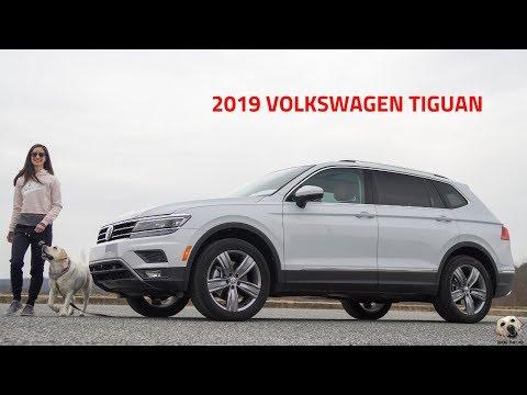 2019 Volkswagen Tiguan: Andie the Lab Review!