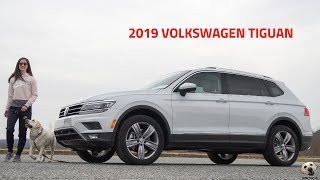 2019 Volkswagen Tiguan: Andie the Lab Review!
