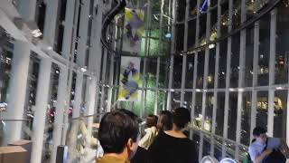 DSCN5707渋谷ストリーム20180912オープン前夜