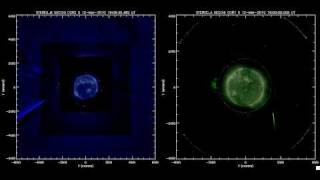 STEREO spacecraft catch comet diving into Sun II