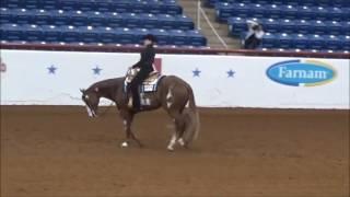 NY 14-18 Horsemanship 2016 APHA Youth World Show