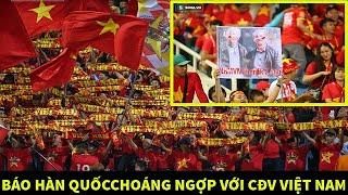 """Báo Hàn Quốc choáng ngợp với CĐV Việt Nam còn CĐV Trung Quốc thì """"run sợ"""" vì ĐTVN giờ quá mạnh"""
