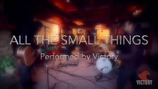 All The Small Things / Blink 182 - Cover by Victory