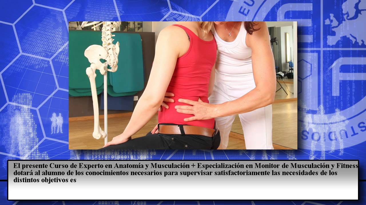 Anatomia Monitor Musculacion Fitness - Cursos Online - YouTube