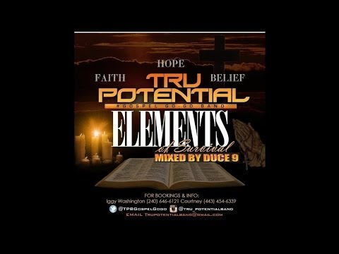 Tru Potential Band - Stand (Elements of Survival)
