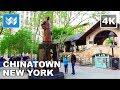 Walking around Little Italy & Chinatown in Lower Manhattan, New York City - 4K