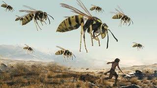 แมลงเมื่อ 300,000,000 ล้านปีก่อน (สัตว์โลกดึกดำบรรพ์)