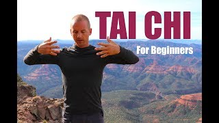 7 Tai Chi Moves for Beginners | 15 Minute Daily Taiji Routine