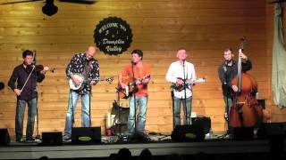 Lonesome River Band - Stray Dogs & Alley Cats