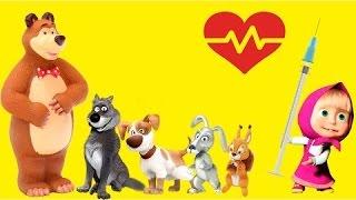 Masza i Niedźwiedź strzykawki przeciw grypy dla zwierzęta