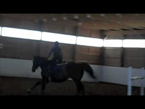 Gustavus Schooling at home: 3'6""
