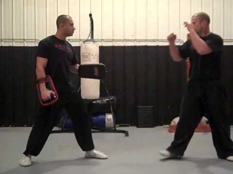 Hop Ga Kuen/ Lama Pai Kung Fu Forms & Fighting Drills