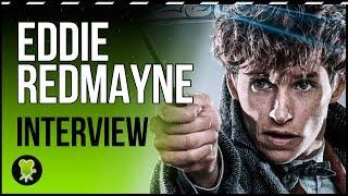 Eddie Redmayne and Callum Turner about Theseus Scamander's lost flashbacks in 'Fantastic Beasts'