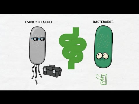 Switching Gut Microbes On and Off/ Cell, April 20, 2017 (Vol. 169, Issue 3)