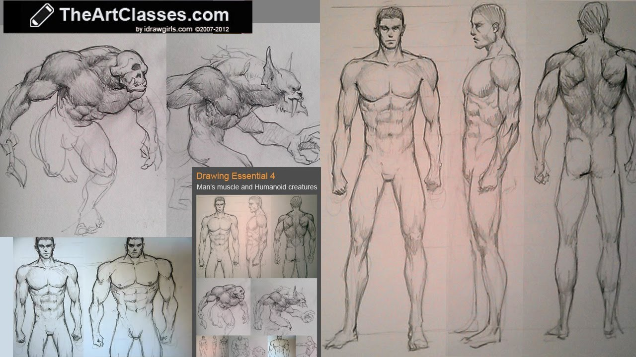 Drawing Men S Muscles And Humanoids Muscle Structure Demo Youtube