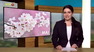 Jahresrückblick - Mai 2019