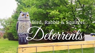 HD Bird, Rabbit & Squirrel Deterrents for your Vegetable Garden