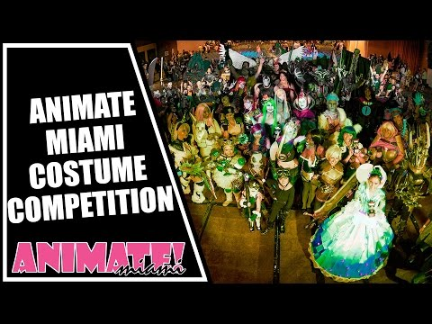 Animate Miami 2015 Costume Competition