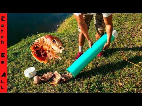 Kayak Fishing High Tide for Redfish and Trout (SURPRISE BIG CATCH) from YouTube · Duration:  12 minutes 50 seconds