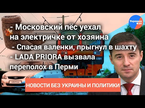 Новости БЕЗ политики и Украины #1: «Приора» и переполох в Перми, пёс уехал на электричке от хозяина