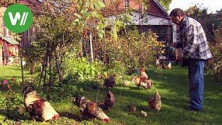 Der Garten im Herbst - Kompost ansetzen und Weidenzaun bauen