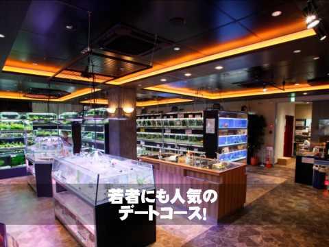 BENIBACHI GALLERY TOKYO 【The 1st anniversary 】